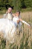 Het openluchtlandschap van het huwelijk Stock Afbeeldingen