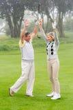 Het opgewekte golfing paar toejuichen Royalty-vrije Stock Afbeelding