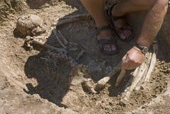 Het opgravende skelet van de archeoloog Stock Foto's