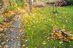 Het opruimen van de Tuin in de Herfst Stock Foto