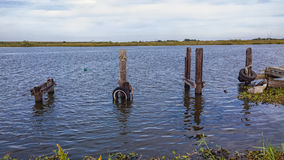 Het Opstapelen zich van Louisiane Bayou Royalty-vrije Stock Foto