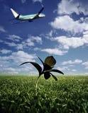 Het opstijgen van het vliegtuig Royalty-vrije Stock Foto's