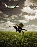 Het opstijgen van het vliegtuig Stock Fotografie