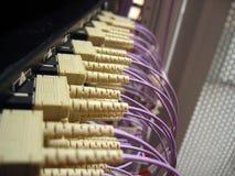 Het Optische Netwerk van de vezel Royalty-vrije Stock Afbeeldingen