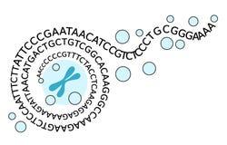 Het opvouwen van genomic informatie Stock Foto's