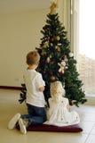 Het opzetten van de Kerstmisboom Stock Foto's