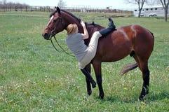 Het opzetten van een paard Royalty-vrije Stock Foto