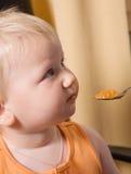 Het oranje voeden Stock Fotografie