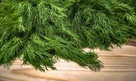 Het organische natuurlijke close-up van de vitamine verse groene dille stock foto