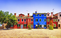 Het oriëntatiepunt van Venetië, Burano-eilandvierkant, boom en kleurrijke huizen, stock foto
