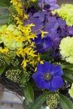 Het originele boeket van blauwe anemonen, anjers, forsythia bevindt zich in een glasvaas Stock Fotografie