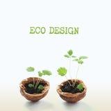 Het originele concept van het Ecoontwerp, groene spruiten in een okkernootshells macromening het groeien installaties, patroon en Royalty-vrije Stock Fotografie