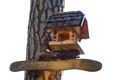 Het originele vogelhuis in een park op een boom isoleer royalty-vrije stock foto's