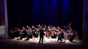 Het Orkest van de vier seizoenenkamer stock video