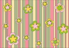 Het ornament van de lente Stock Fotografie