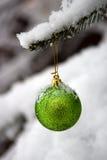 Het ornament van het nieuwjaar op een tak Royalty-vrije Stock Fotografie