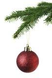 Het ornament van Kerstmis op de boom Stock Afbeeldingen