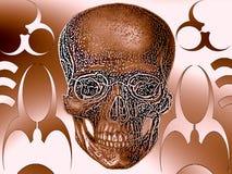 Het ornamentillustratie van de schedel royalty-vrije illustratie