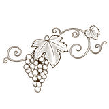 Het ornamentvector van wijnstoktakken Royalty-vrije Stock Foto's
