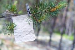 Het oude bericht op een tak in het bos Royalty-vrije Stock Fotografie
