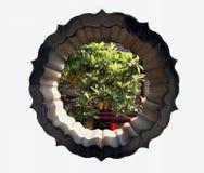Het oude Chinese tuinhuis Stock Afbeeldingen