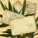 Het oude document van Grunge voor ontwerp met bamboe Stock Foto