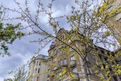 Het oude gebouw van Boedapest op een bewolkte dag royalty-vrije stock foto's
