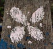 het oude hout en textuur detailleren Stock Foto's