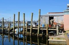 Het oude Huis van Vissen Stock Fotografie