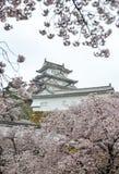 Het oude Kasteel van Himeji met kersenbloesem stock foto