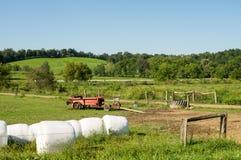 Het oude Landbouwbedrijf voert in Weiland uit Stock Afbeelding