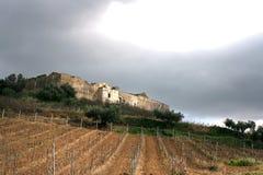 Het oude landbouwbedrijf _ Wijngaarden van het landbolwerk. Gebieden & Bomen Royalty-vrije Stock Foto