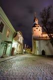Het oude landschap van de stadsnacht in Tallin Stock Fotografie