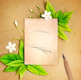 Het oude lege document blad met de verse groene lente doorbladert grens Royalty-vrije Stock Foto