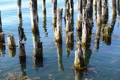 Het oude Opstapelen van het Dok zich in kalme oceaanwateren stock foto's