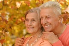 Het oude paar stellen bij de herfstpark Royalty-vrije Stock Foto