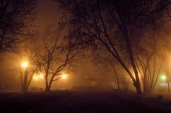 Het oude park in mist Stock Fotografie