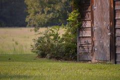 Het oude Rookhok van het Land Stock Fotografie