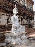 Het Oude standbeeld van Boedha Royalty-vrije Stock Afbeelding
