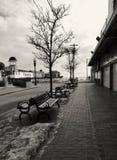 Het oude Strand van de Boomgaard stock foto's