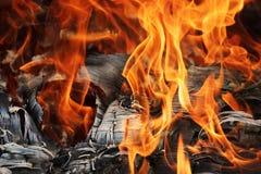 Het oude triplex brandt prachtig in de brand met de vorming van textuuras Royalty-vrije Stock Foto's