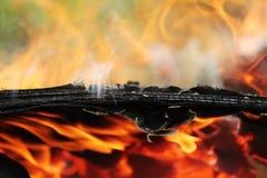Het oude triplex brandt prachtig in de brand met de vorming van textuuras Stock Afbeelding