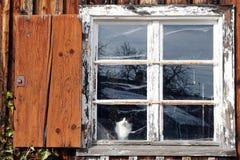 Het oude venster Royalty-vrije Stock Foto