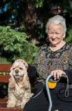 Het oude vrouw stellen met Amerikaans spaniel stock afbeeldingen