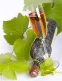 Het oude wijn nog-leven. Stock Afbeelding