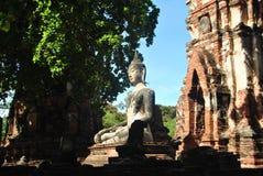 Het oude witte standbeeld van Boedha in Ayutthaya, Thailand royalty-vrije stock fotografie