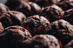 Het oven-dienblad van de huisvrouwenholding met chocolade cupcakes, sluit omhoog stock afbeelding