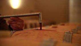 Het overhevelen van wijn in een vat` s kelder stock videobeelden