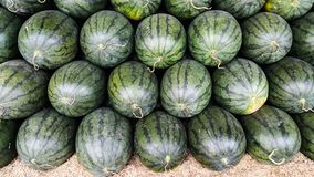 Het overlappen van vele watermeloenen Royalty-vrije Stock Foto