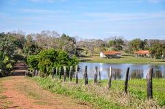 Het overstroomde landbouwbedrijf, Mato Grosso doet Sul (Brazilië) stock fotografie